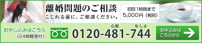 0120-481-744